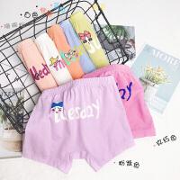 女童短裤春装女孩平角内裤儿童四角短裤