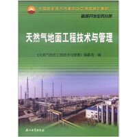 天然气地面工程技术与管理