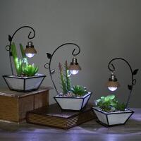 美式铁艺家居饰品仿真盆栽多肉创意个性小台灯现代简约摆件