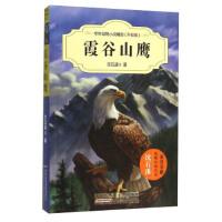 霞谷山鹰(升级版),沈石溪,安徽少儿出版社,9787539786704