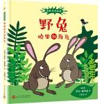 森林里的秘密:野兔哈里和海达(精装)