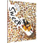 英文原版绘本3 6岁 Sweep 清扫 扫走坏心情 入围2019年凯特格林纳威奖 儿童情绪管理绘本 Julia Sar