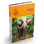 动物小说大王沈石溪・品藏书系:象母怨(升级版)