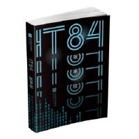 IT84 张辛欣 江苏凤凰文艺出版社