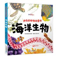 神奇的动物科普书 海洋生物