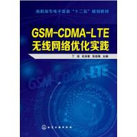 GSM-CDMA-LTE无线网络优化实践(丁远),丁远,花苏荣,张远海,化学工业出版社【正版图书 品质保证】
