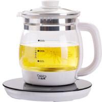 小浣熊养生壶全自动加厚玻璃电煮茶壶多功能除氯烧水花茶壶煮茶器