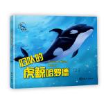 归队的虎鲸哈罗德 糖朵朵 海洋出版社 9787521002096 新华书店 正版保障