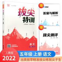 2020秋 拔尖特训五年级上册语文部编人教版