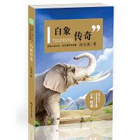 动物小说大王沈石溪系列典藏-白象传奇