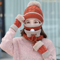 【秋冬新品】毛线帽子女帽子女冬季保暖毛线帽加绒女士骑车防风护耳帽防寒护脸针织帽