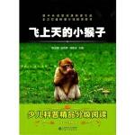 飞上天的小猴子,薛贤荣 陈龙银,安徽大学出版社,9787566409942