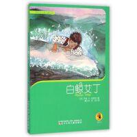 白鲸艾丁/西班牙大奖儿童小说