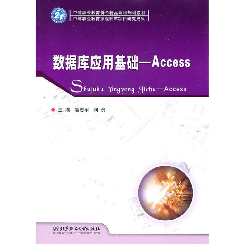 数据库应用基础——Access PDF下载