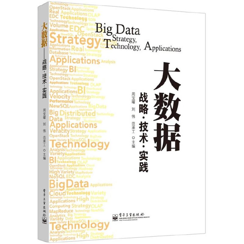 大数据: 战略 技术 实践 PDF下载